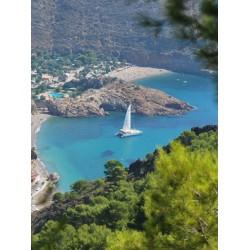 Catamaran Cruise from Cartagena Tuesdays