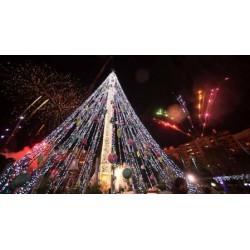 Murcia Christmas Lights & Shopping Thursdays